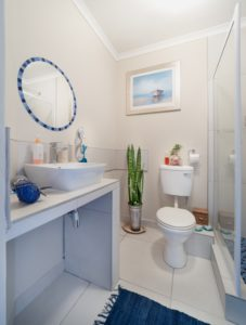 Toilet Repair or Replacement: Which Do You Need?
