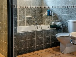 Common Causes of a Leaky Toilet